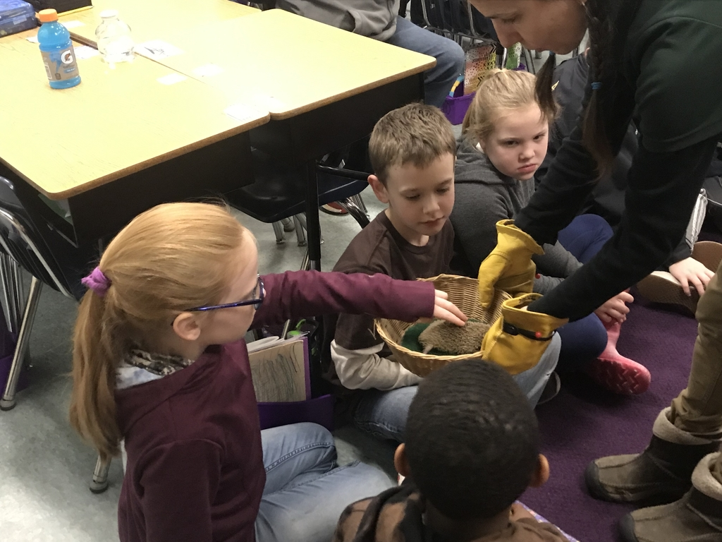 Students petting a Tenrec - Native only to Madagascar